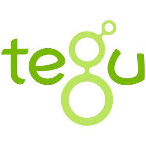 Tegu jouets en bois magnétiques