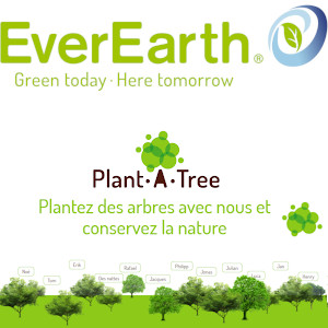 Everearth programme  reforestation Plant a tree Everearth